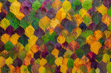 Pattern Of Colorful Autumn Le...