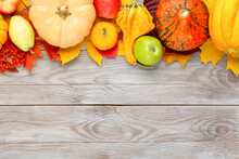 Pumpkins With Colorful Maple L...