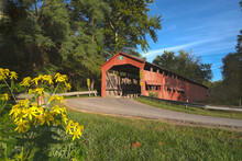 Wildflowers In Front Of The Dunbar Covered Bridge