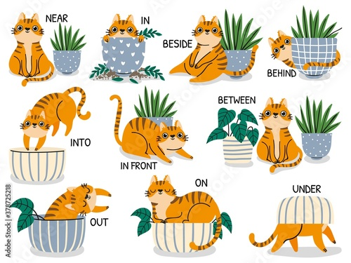 English prepositions. Educational visual material for kids learning language. Cute cat behind, above, near and under flower pot vector set. Foreign language for children illustration - 378725218