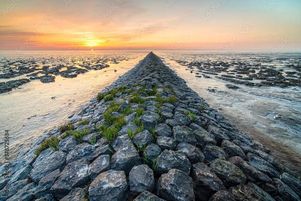 Fototapeta Wadden coast twilight with swallow landscape
