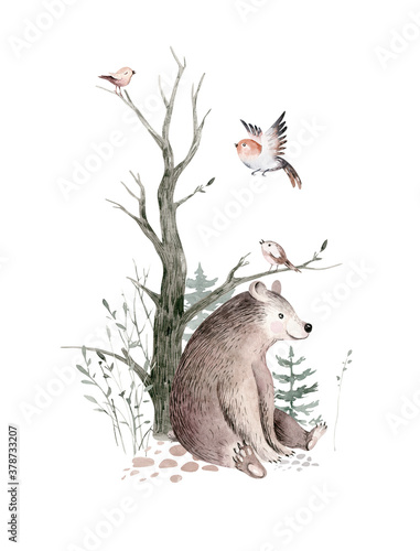 Fototapeta Woodland watercolor cute animals baby bear. Scandinavian bear orest nursery poster design. Isolated charecter obraz