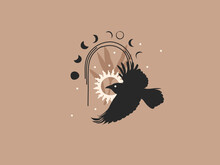 Hand Drawn Vector Abstract Stock Flat Graphic Illustration With Logo Elements ,crow,sun And Moon Phases In Arch , Magic Line Art In Simple Style For Branding ,isolated On Color Background