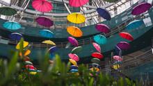 Colorful Umbrellas In Seoul, S...