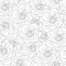 Realistic Gardenia Flower Seam...