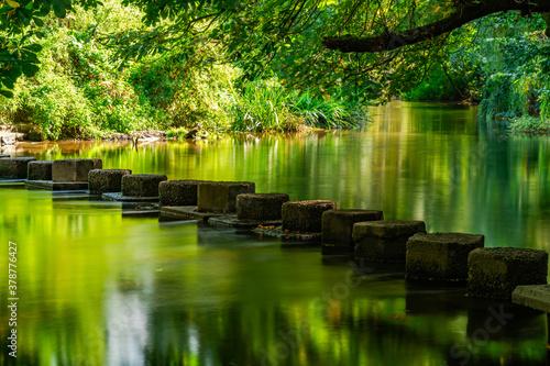 Photo Stepping Stones