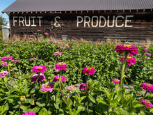 Roadside Fruit And Produce Sta...