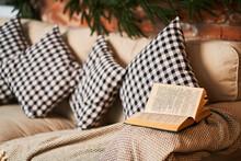 Favorite Cozy Sofa With Checke...