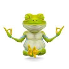 Little Frog Cartoon Is Doing Yoga