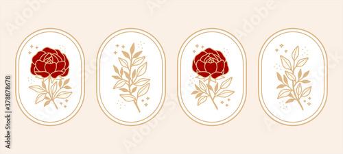 Photo Vintage botanical rose flower, and leaf vector element set in minimal linear style