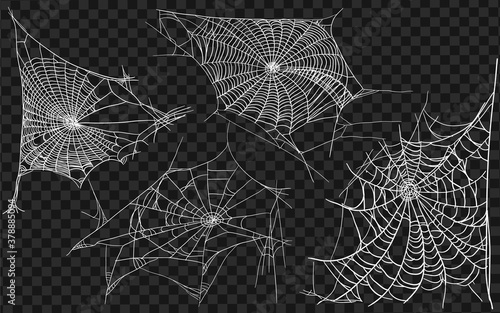 Fotografie, Obraz Set of different spiderwebs isolated on black, easy to print
