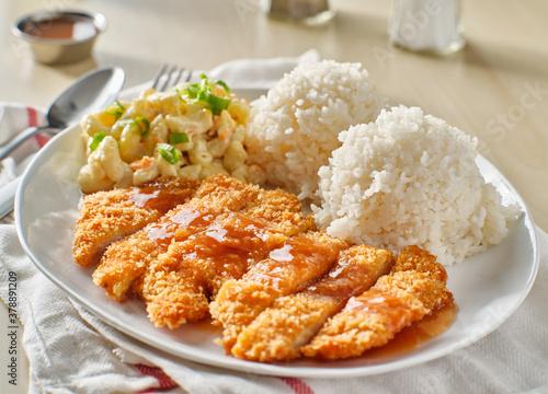 Obraz na plátně chicken katsu hawaiian bbq plate with gravy and rice