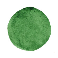 Abstract Foerest Green Brush Stroke Circle Shape Background Banner.