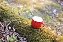 赤いマグカップのある景色(森の中)