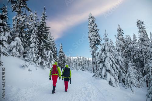 Fototapeta Turyści w górach zimą obraz