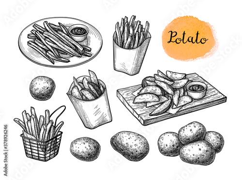 Fototapeta Ink sketch of fried potatoes. obraz