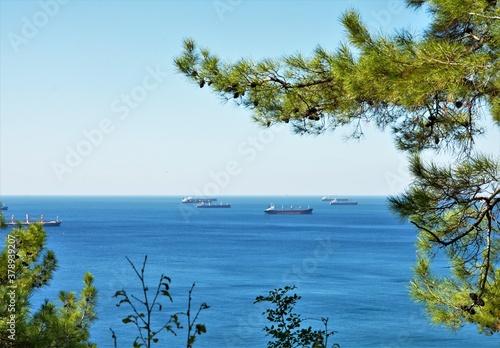 Obraz na plátně Ships in the roadstead