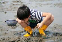 A Boy Digging Shells Alone In ...