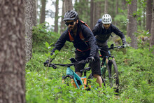 Cycling Outdoor Adventure In A...