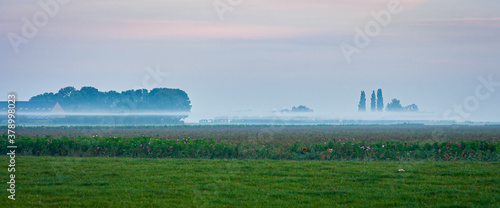 Cuadros en Lienzo Patches of fog float above the dutch polder landscape in the early morning