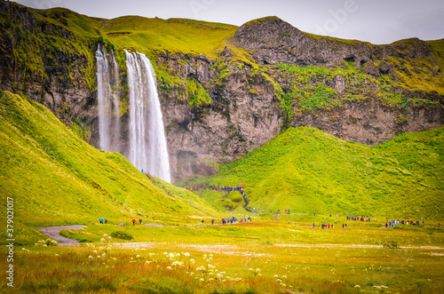 Fotomural The photo shows beautiful Seljalandfoss waterfall in Iceland.