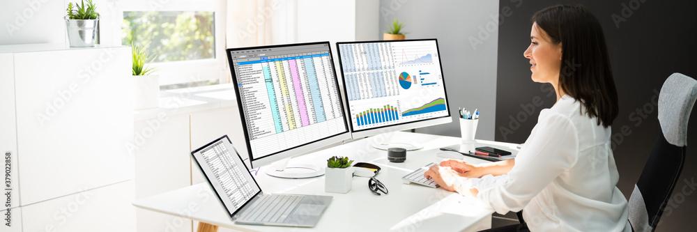 Fototapeta Analyst Working With Spreadsheet Business Data