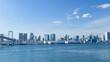 canvas print picture - 青空を背景にレインボーブリッジから見た芝浦ふ頭とビル群