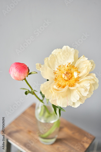 Fototapeta Bud and opening into a flower. Coral peonies in a glass vase on wooden table. Beautiful peony flower for catalog or online store. Floral shop concept . Beautiful fresh cut bouquet. Flowers delivery. obraz