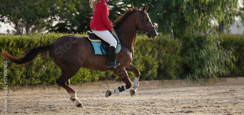 Fototapeta The horsewoman on a brown horse, equestrianism. Horse racing