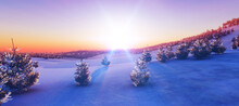 Above Winter Forest Mountain S...