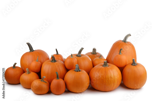 Fototapeta Many orange pumpkins isolated obraz