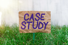 Word Writing Text Case Study. Business Photo Showcasing Analysis And A Specific Research Design For Examining A Problem Crumpled Paper Attached To A Stick And Placed In The Green Grassy Land