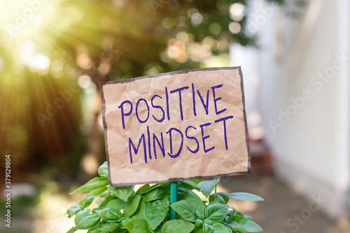 Slika na platnu Writing note showing Positive Mindset