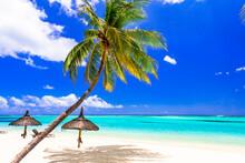 Perfect Tropical Beach Scenery...