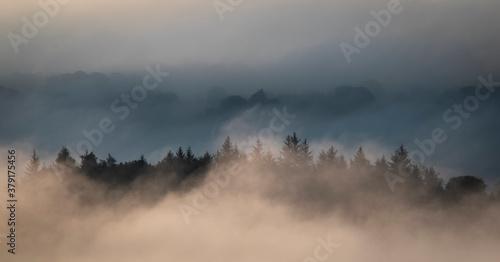 Obraz na plátně Fog, Lochwinnoch, Renfrewshire, Scotland,UK.