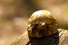 Metal Turtle On A Colored Background. Symbol Of Stability And Wisdom.
