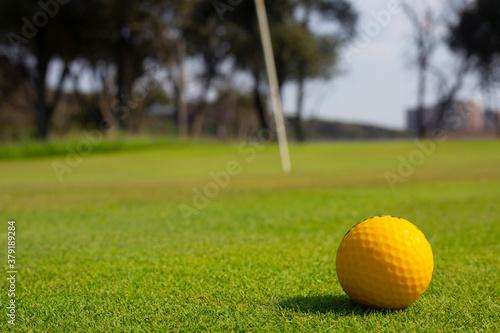 Fototapeta Golf club obraz