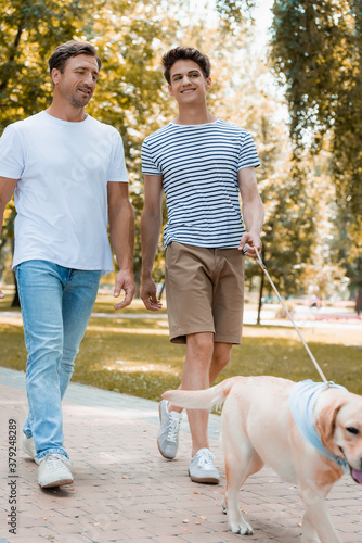 Foto selective focus of teenager son and father walking with golden retriever on asph