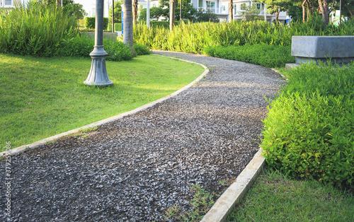 Cuadros en Lienzo Walkway and bush in garden