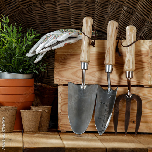 Cuadros en Lienzo Gardening tools on a wooden table before fall cleanup