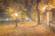 Night rainy park with yellow maple leaves, pavement and lanterns behind wet rainy glass in golden autumn. The concept of bad weather, change of season and leaf fall. Abstract landscape.