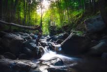 Abetone, Stream Waterfall Insi...