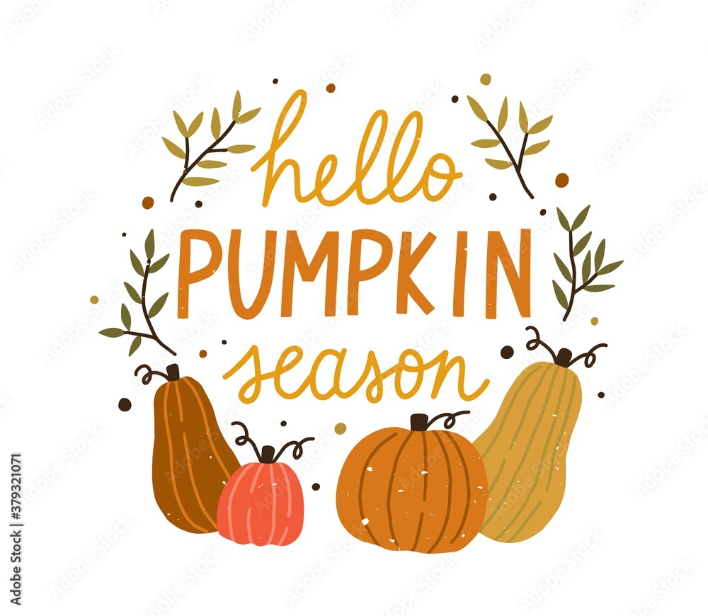 Fototapeta Hello pumpkin season cute colorful composition with quote inscription vector flat illustration. Colorful autumn hand drawn lettering decorated with design elements isolated. Creative fall phrase