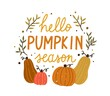 Hello pumpkin season cute colorful composition with quote inscription vector flat illustration. Colorful autumn hand drawn lettering decorated with design elements isolated. Creative fall phrase