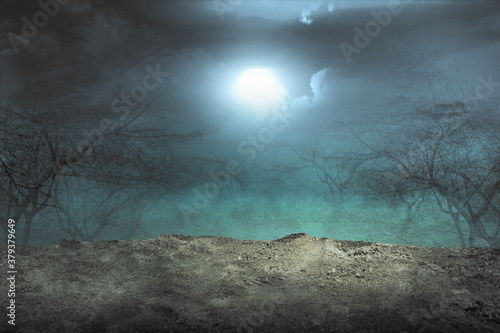 Haunted forest with fog and moonlight background Fotobehang
