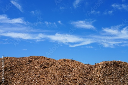 Fototapeta Big pile of wooden chips used as garden mulch obraz