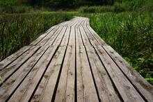 湿地帯に設けられた木製の遊歩道