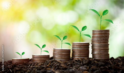 Foto The coins are stacked look like the stair on fertile soil with growing plant,concept saving money,home loan,income on bokeh background