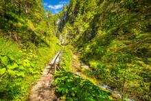 Mountain Landscape In The Jura...