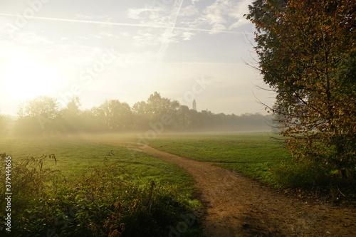 Cuadros en Lienzo meadow shrouded in fog